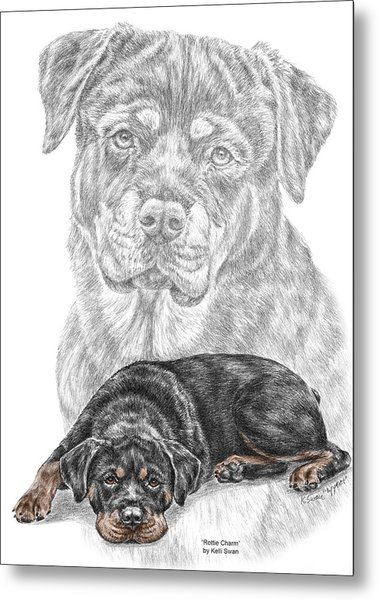 Rottie Charm - Rottweiler Dog Print With Color Metal Print