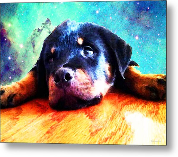 Rottie Puppy By Sharon Cummings Metal Print