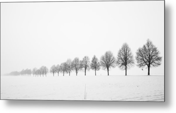 Row Of Bare Trees In Minimal Winter Landscape Metal Print