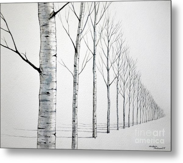 Row Of Birch Trees In The Snow Metal Print