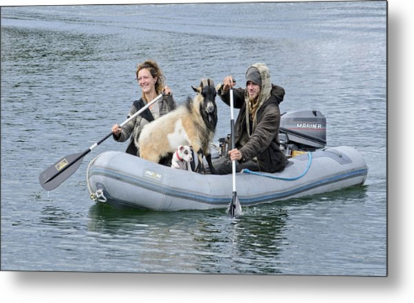 Row Your Goat Metal Print