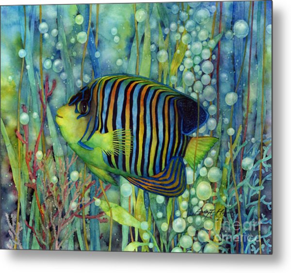 Royal Angelfish Metal Print