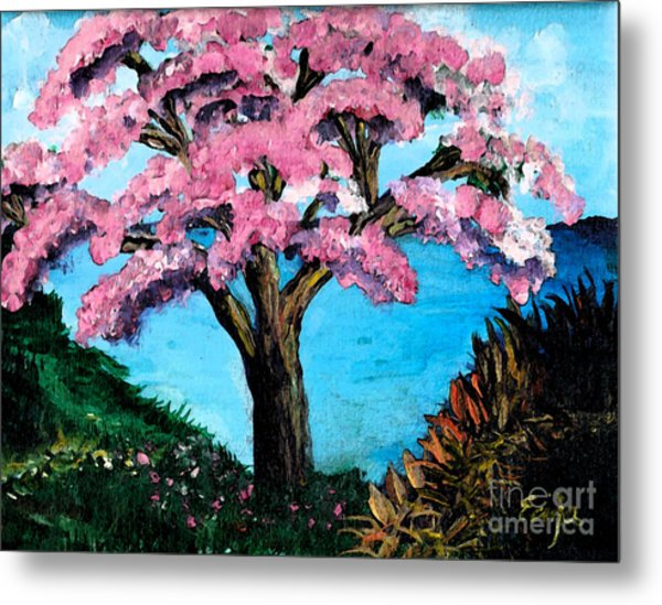Royal Pink Poinciana Tree Metal Print