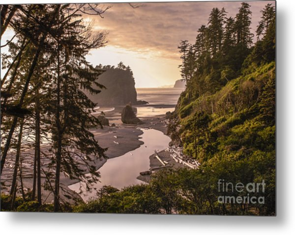 Ruby Beach Landscape Metal Print