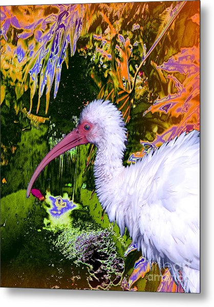 Ruffled Feathers Metal Print by Doris Wood