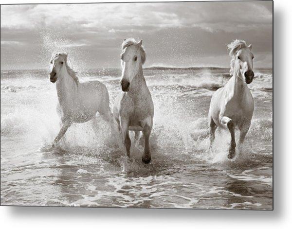 Run White Horses II Metal Print