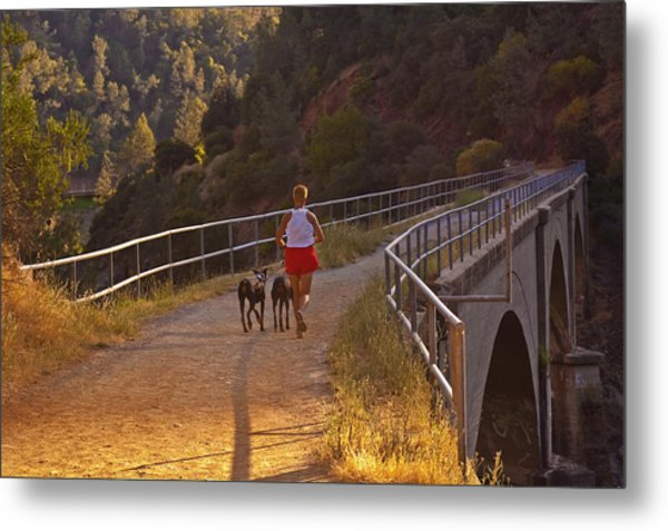 Metal Print featuring the photograph Running On No Hands by Sherri Meyer