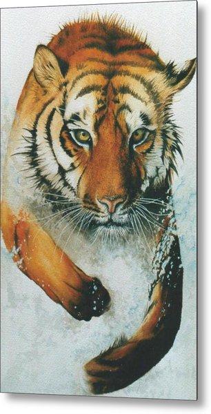 Running Tiger Metal Print