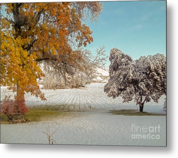 Rural Early Snow In Western Colorado  Metal Print