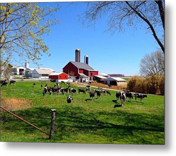 Rural Farm Metal Print