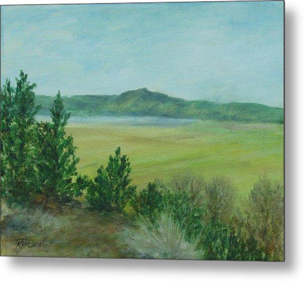 Rural Landscape Art Original Colorful Oil Painting Swan Lake Oregon  Metal Print