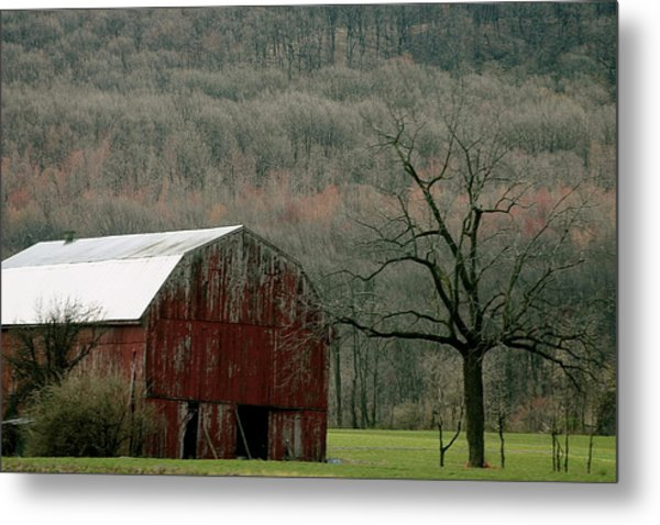 Rural Peace Metal Print