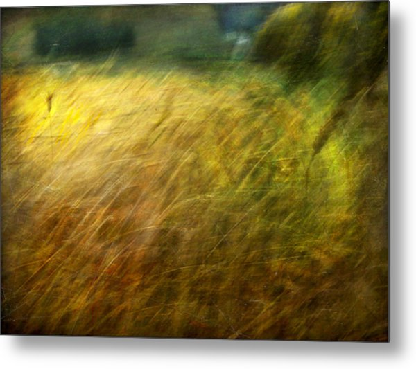 Ruralscape #8. Field And Wind Metal Print by Alfredo Gonzalez