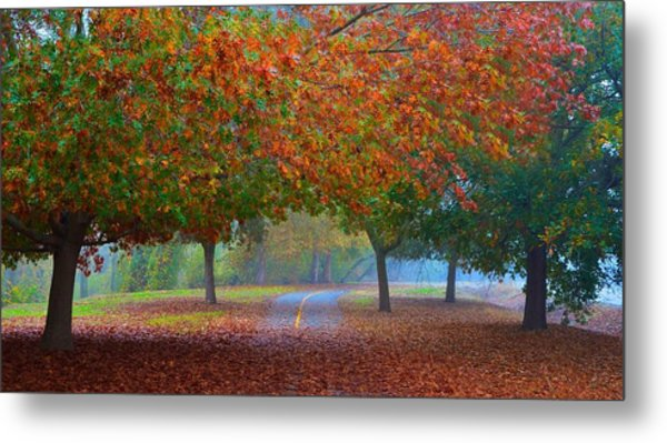 Sacramento River Bike Trail Metal Print