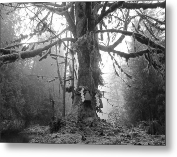 Sacred Tree No. 2 Metal Print