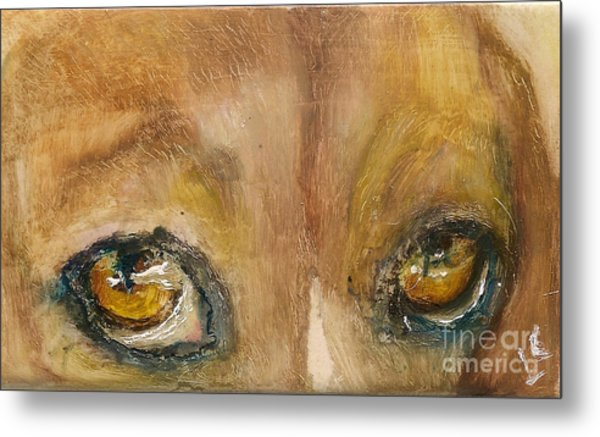 Sad Eyes Metal Print