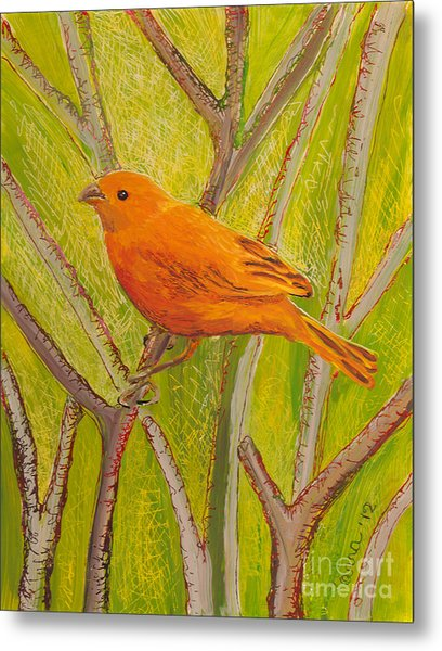 Saffron Finch Metal Print