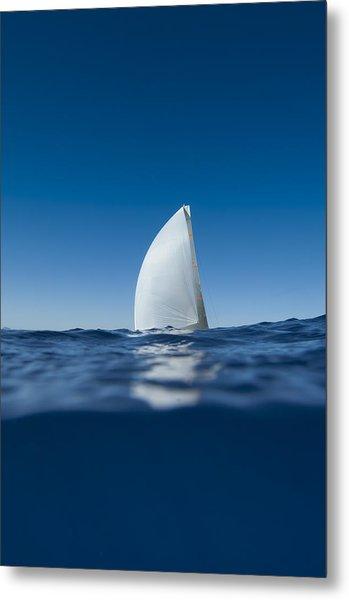 Sail Fin Metal Print by Chris Cameron