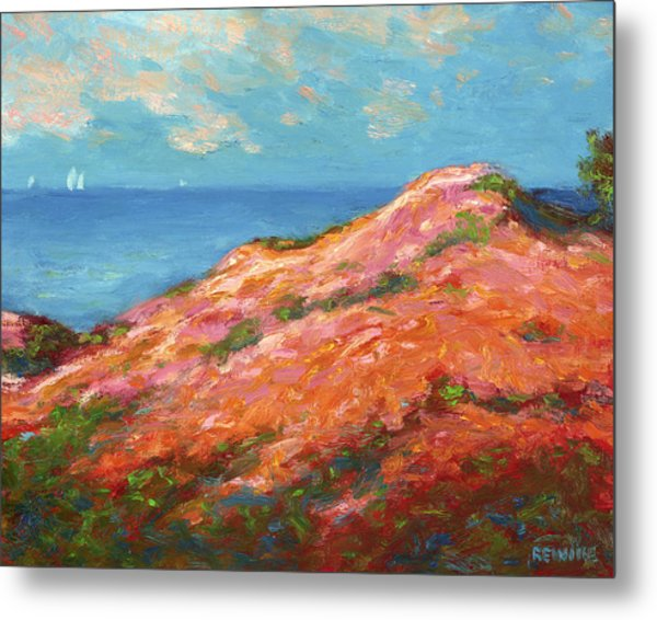 Sailing Off The Southern Coast Metal Print