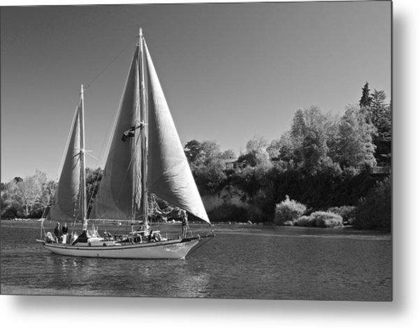 The Fearless On Lake Taupo Metal Print