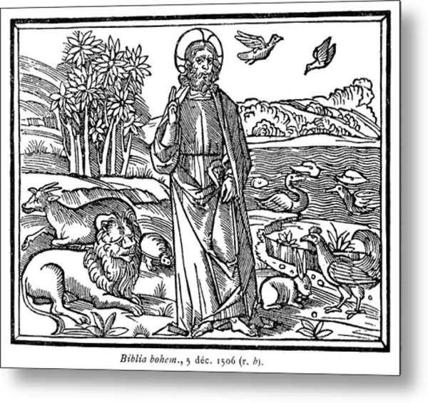 Saint Francis, 1506 Metal Print