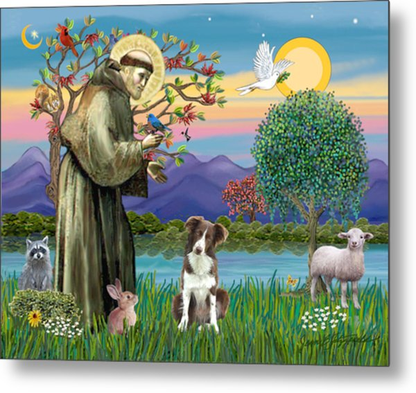 Saint Francis Blesses A Brown And White Border Collie Metal Print