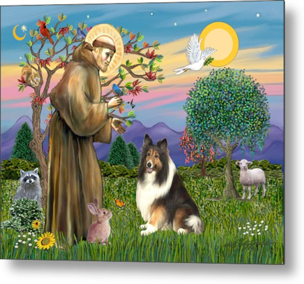 Saint Francis Blesses A Sable And White Collie Metal Print