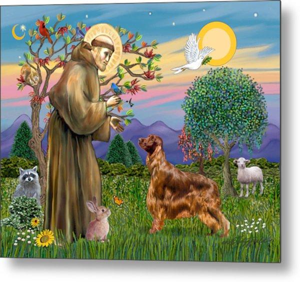 Saint Francis Blesses An Irish Setter Metal Print