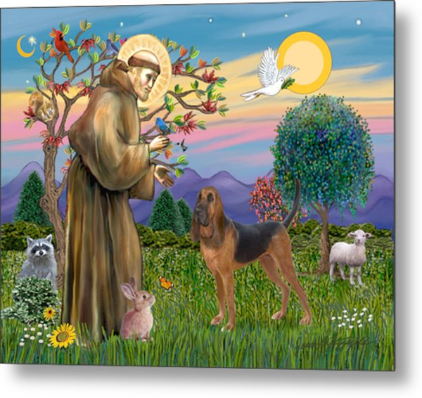 Saint Francis Blessing A Bloodhound Metal Print