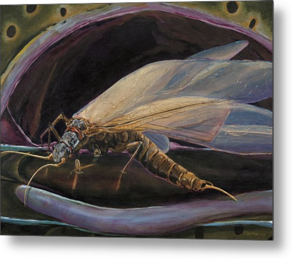 Salmon Fly Dinner Metal Print
