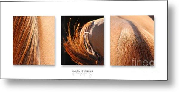 Salon D'equus Dark Metal Print