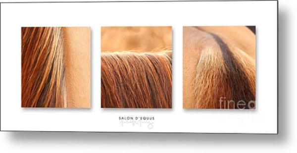 Salon D'equus Light Metal Print