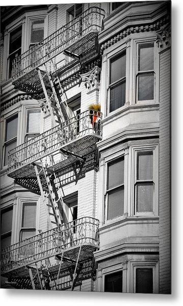 San Francisco Raised Garden Metal Print
