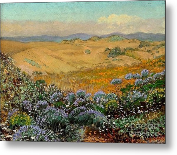 San Francisco Sand Dunes And Wildflowers Metal Print by Roberto Prusso