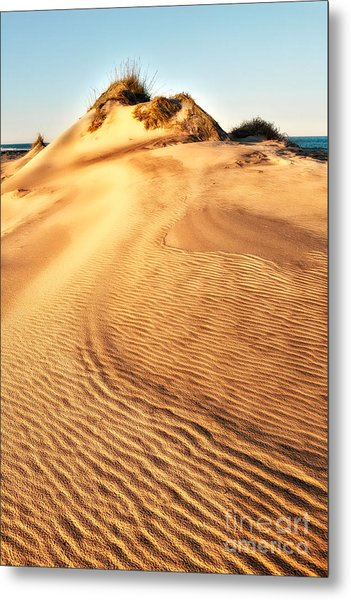 Sand Dune Textures - Outer Banks I Metal Print by Dan Carmichael