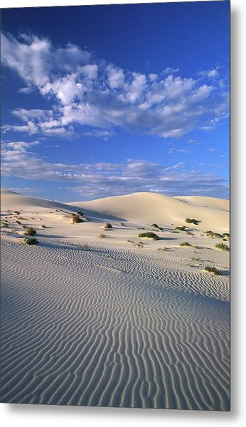 Sand Dunes Carved By Wind Metal Print