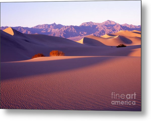 Sand Dunes In Death Valley Metal Print