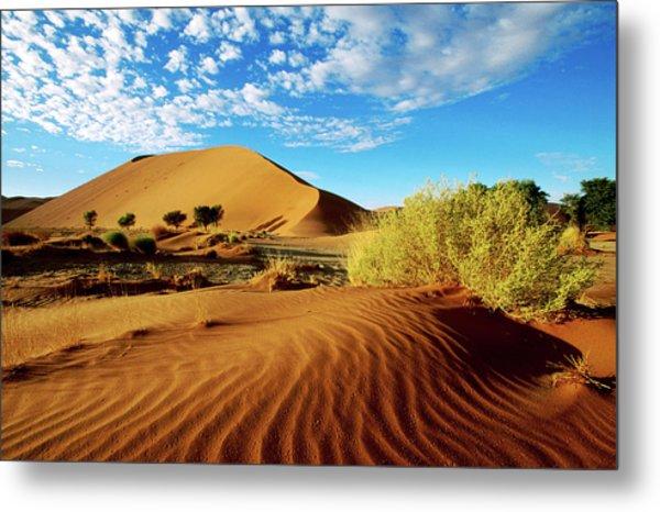 Sand Dunes In Namib Desert Park Metal Print