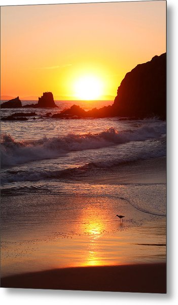 Sandpiper Sunset Metal Print