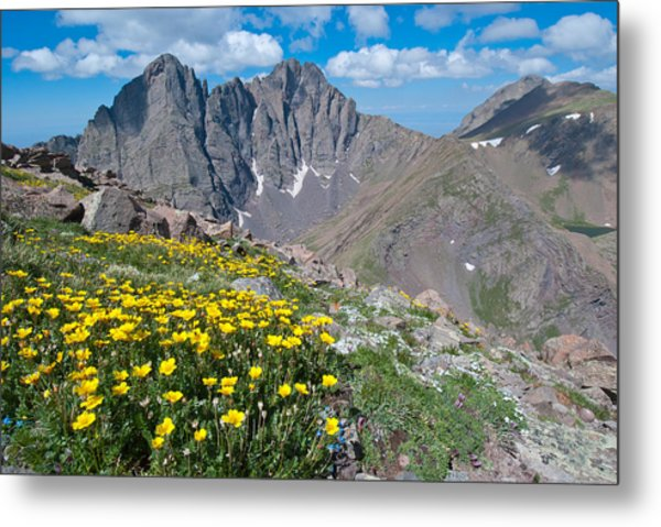 Sangre De Cristos Crestone Peak And Wildflowers Metal Print