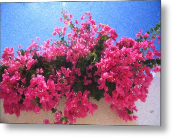 Santorini Flowers Grk1113 Metal Print