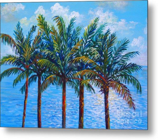 Sarasota Palms Metal Print