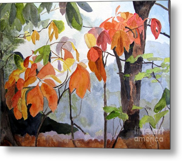 Sassafras Trees On The Ridge Metal Print