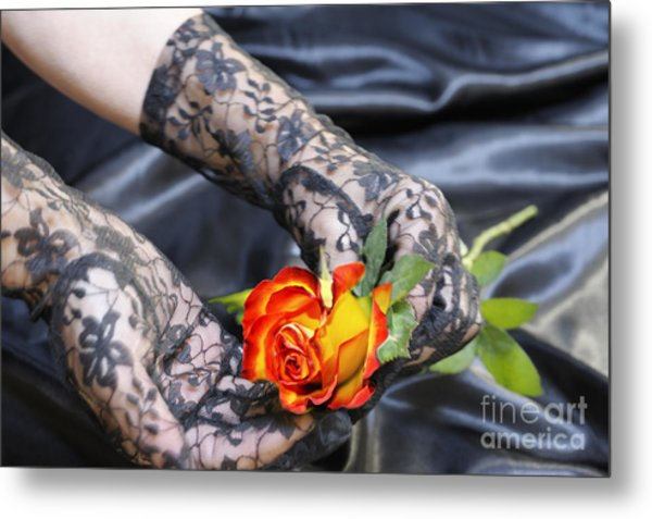 Satin Lace And Rose Metal Print
