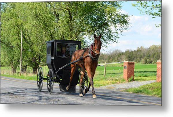 Saturday Buggy Ride Metal Print