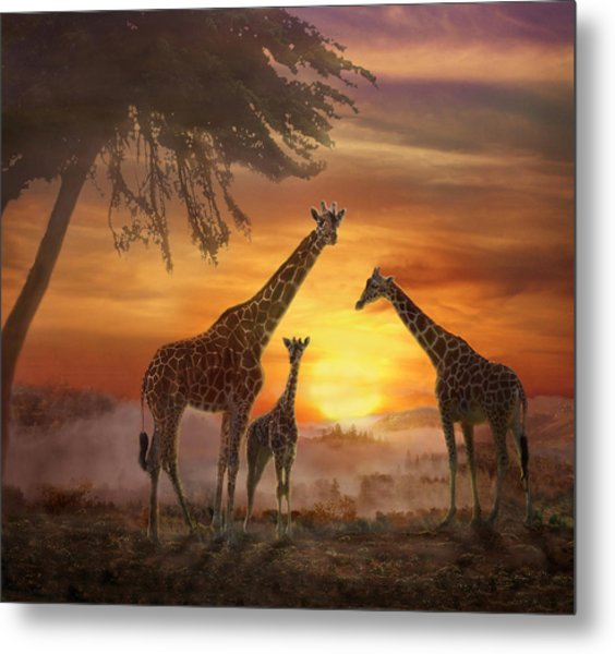 Savanna Sunset Metal Print