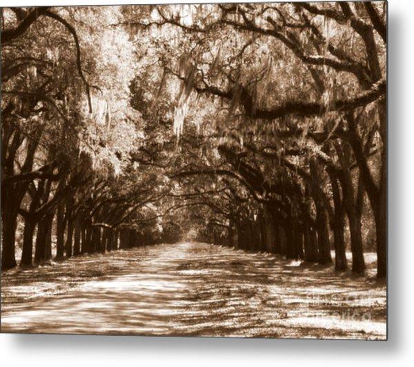 Savannah Sepia - The Old South Metal Print