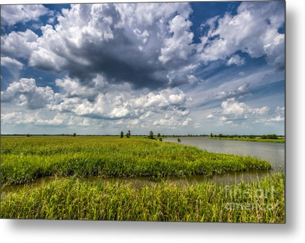 Savannah Wildlife Refuge  Metal Print