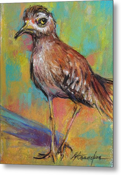 Say What Metal Print by Beverly Amundson