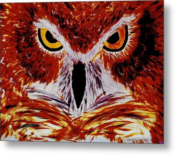 Scarlet Owl Metal Print by David Cates
